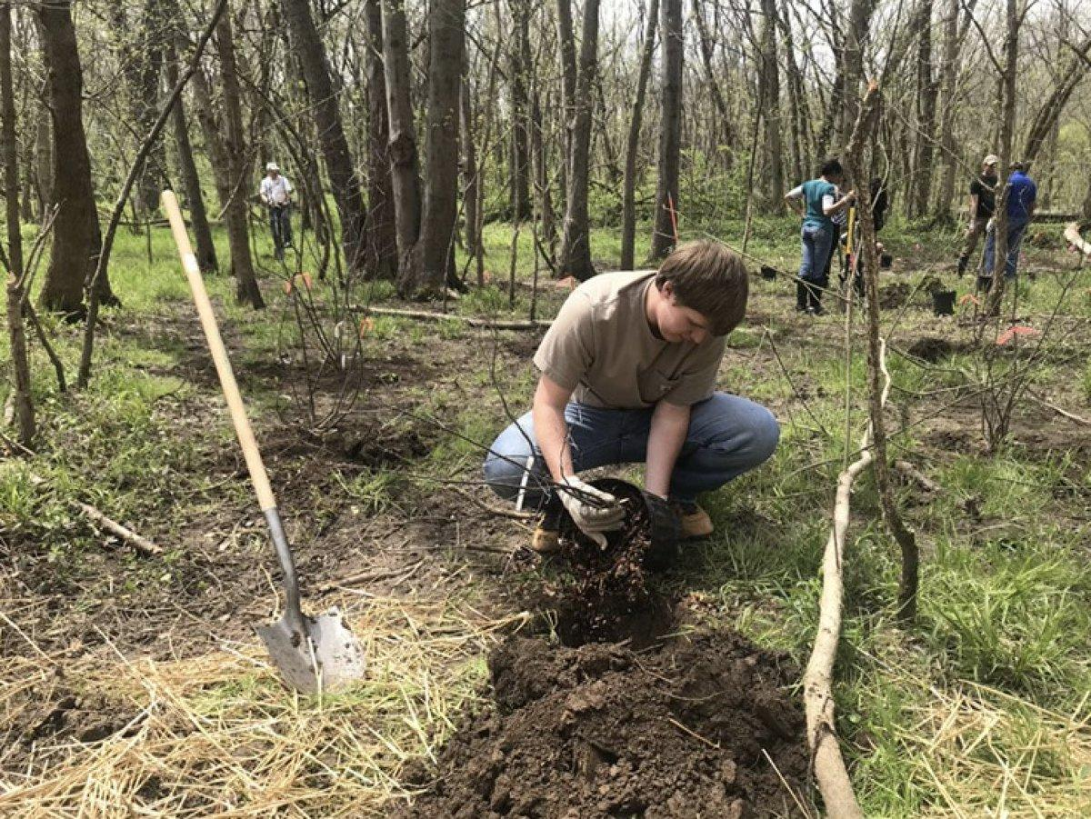 Urban Forest Initiative Tree Week 2019 Planting at McConnell Springs
