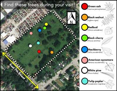 Urban Forest Initiative African American Cemetery No. 2 tree brochure