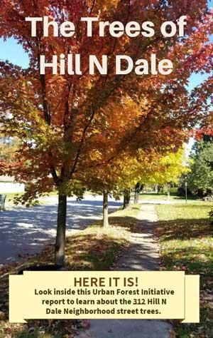 Urban Forest Initiative Hill N Dale Neighborhood Report