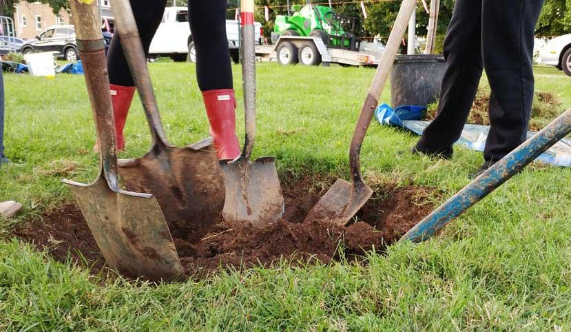 UK students plant trees (Nic Williamson)