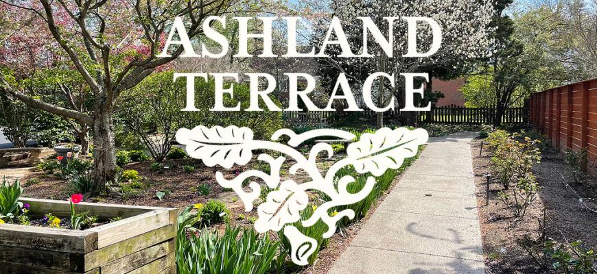 urban forest initiative tree week 2021 ashland terrace