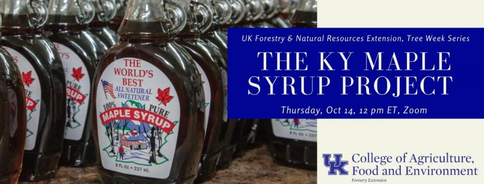 urban forest initiative tree week 2021 maple syrup