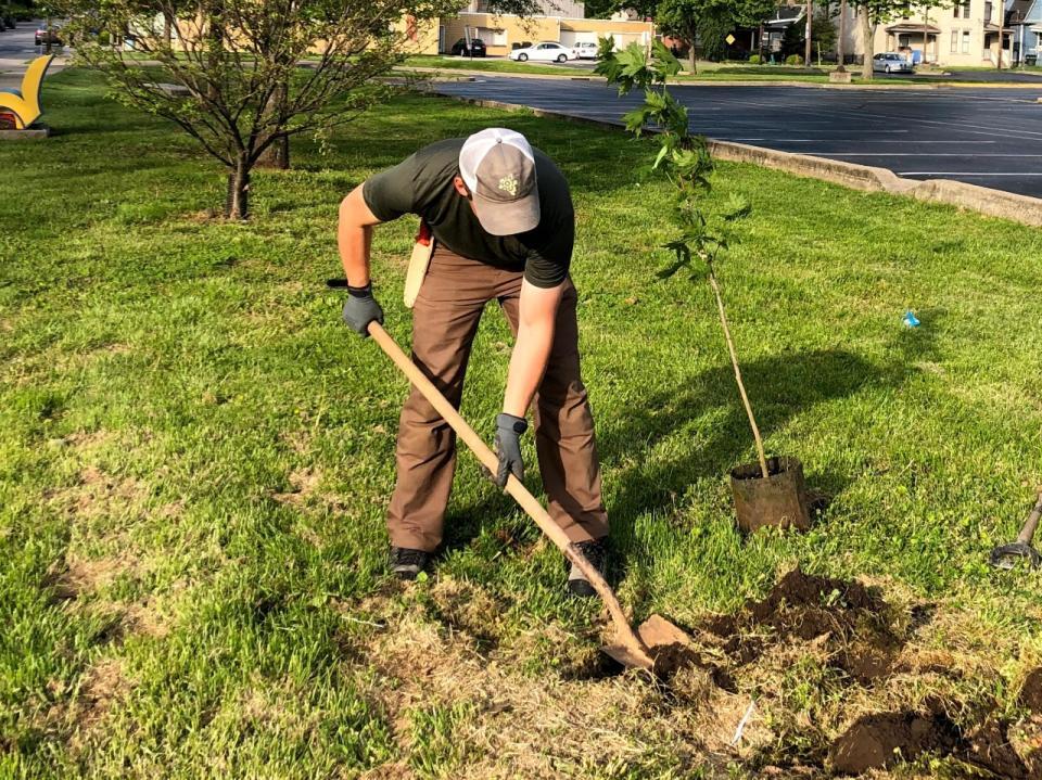 urban forest initiative tree week 2021 greenhouse 17 planting