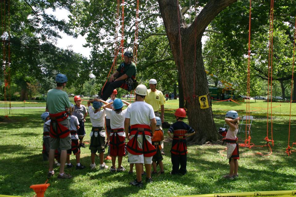 urban forest initiative tree week 2021 tree climbing