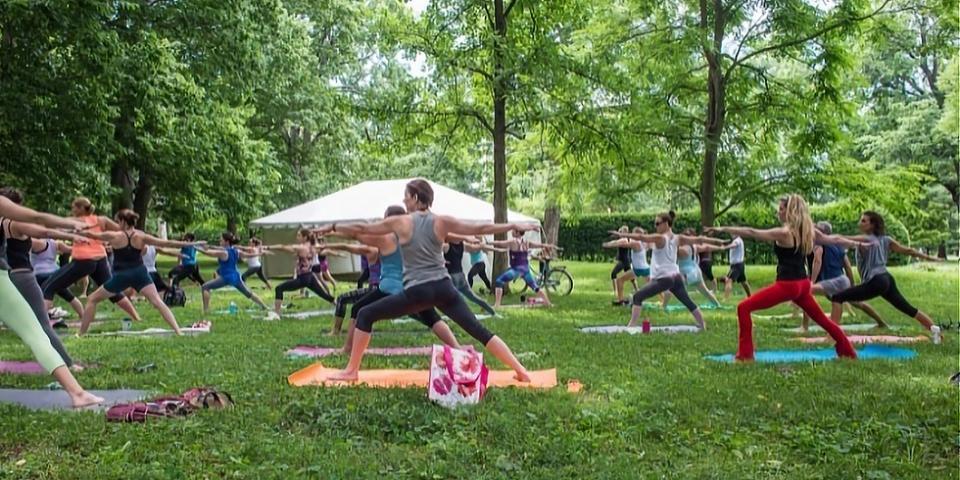 Urban Forest Initiative Tree Week 2021 yoga
