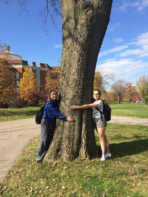 The favorite northern hackberry of Cassie Odom, Tiffany Webster in fall 2015