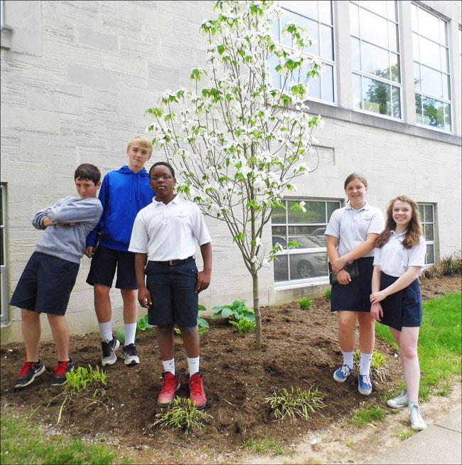 Gracie, Isabelle, Phillipe, Jack, Brennan and dogwood near Christ the King School April 2015 (K. Leonard)