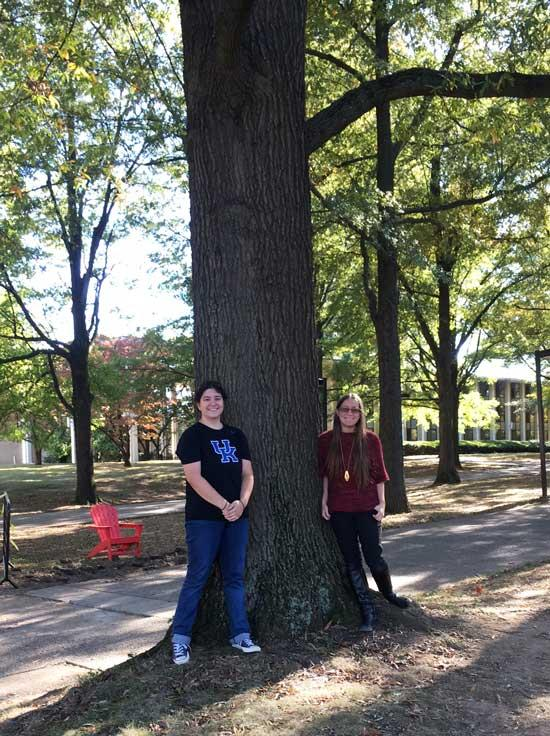 The favorite willow oak of Monica and Felicia in October 2016
