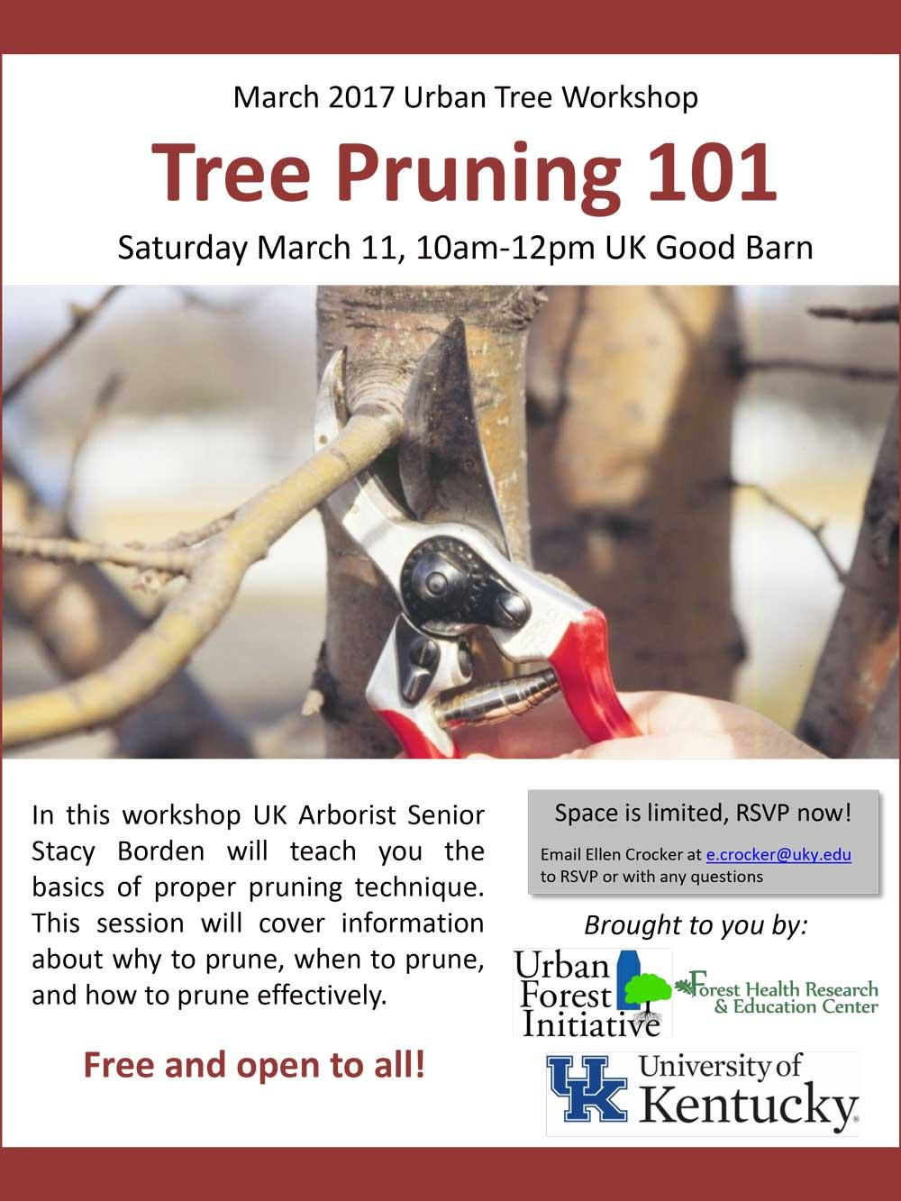 Tree pruning workshop flyer (March 11, 2017)