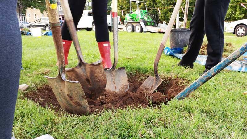 Urban Forest Initiative Tree Week Tree Planting LFUCG 1