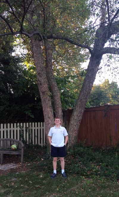 The favorite green ash of Beau in Summer 2015