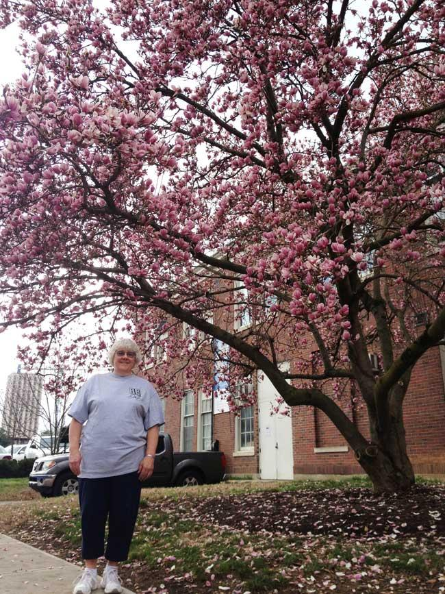 Millie and her favorite saucer magnolia in March 2016