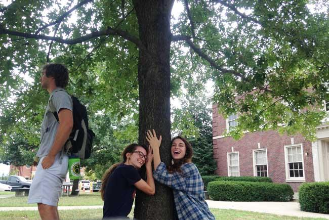 The favorite scarlet oak of Abby, Kelsey, and Elliot on University of Kentucky Campus in September 2016
