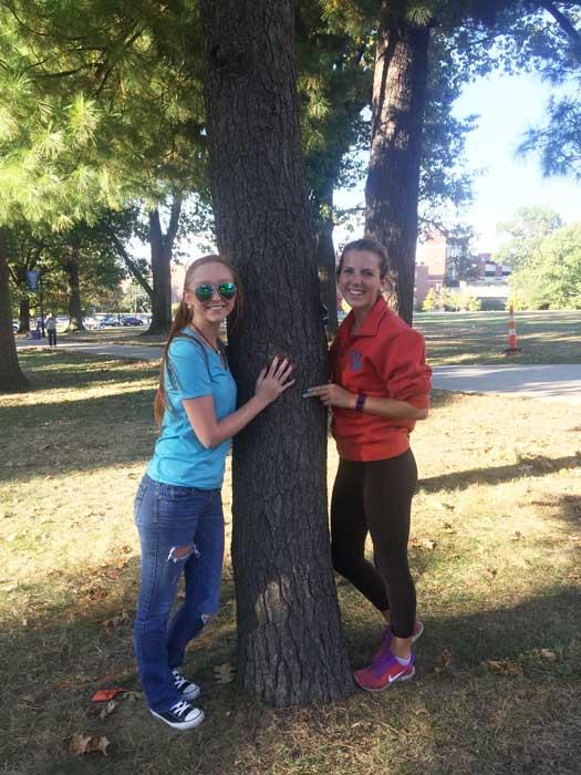 The favorite white pine of Alyson and Lindsay in October 2016