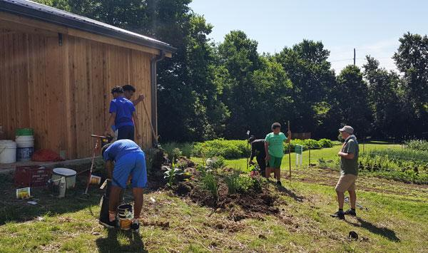 Urban Forest Initiative Tree Week 2019 Seedleaf Kickoff