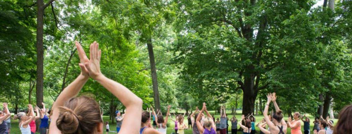 Urban Forest Initiative Tree Week 2019 Yoga at Ashland
