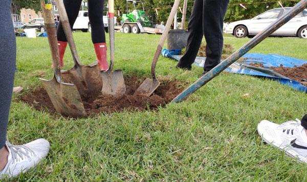 Urban Forest Initiative Tree Week 2019 Signature Tree Planting