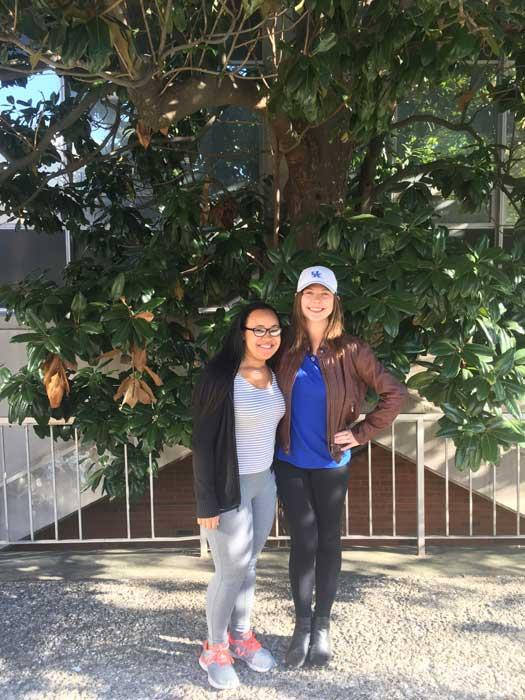 The favorite magnolia of Avery and Brooke in October 2016