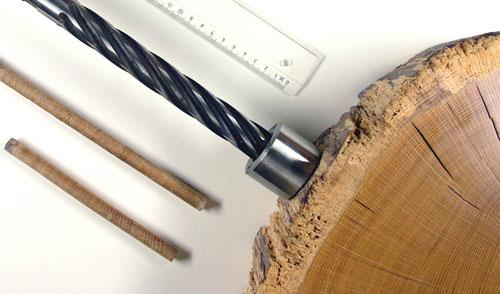 Urban Forest Initiative Tree Week Extreme Explorers: Dendrochronology