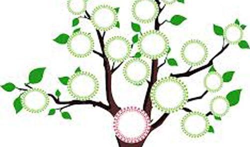 Urban Forest Initiative Tree Week Northside: Grow Your Family Tree: Genealogy 101