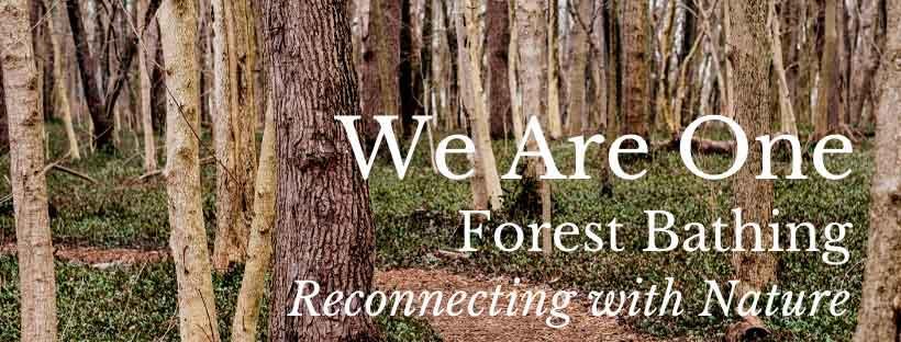urban forest initiative tree week 2020 forest bathing