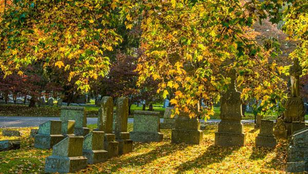 Urban Forest Initiative Tree Week Wheelchair Tree Tour of Lexington Cemetery