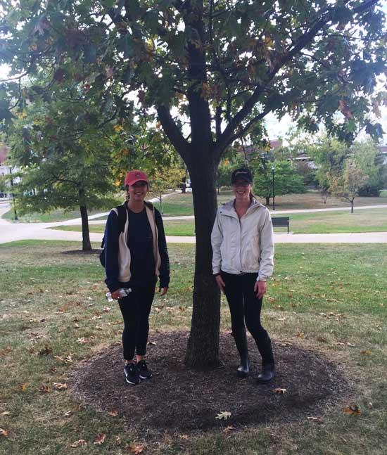 The favorite red oak of Hannah and Lauren in October 2016
