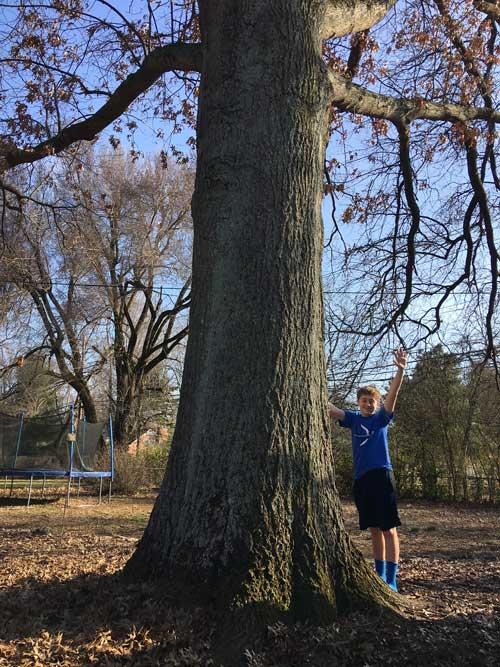 Adopt-a-Tree: Laurie, Sam and pin oak