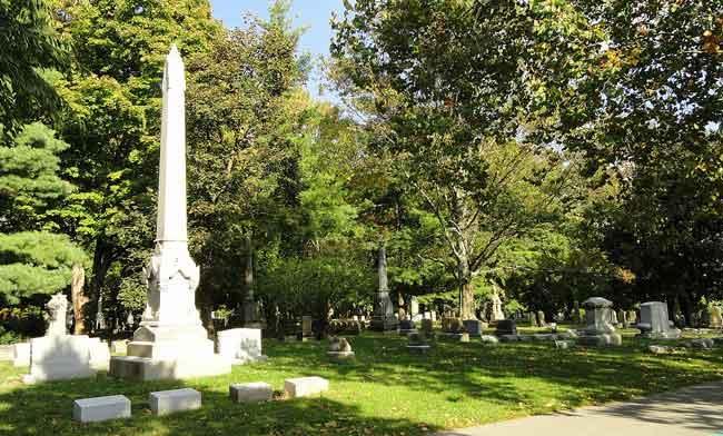 urban forest initiative tree week 2020 lexington cemetery conifer walk