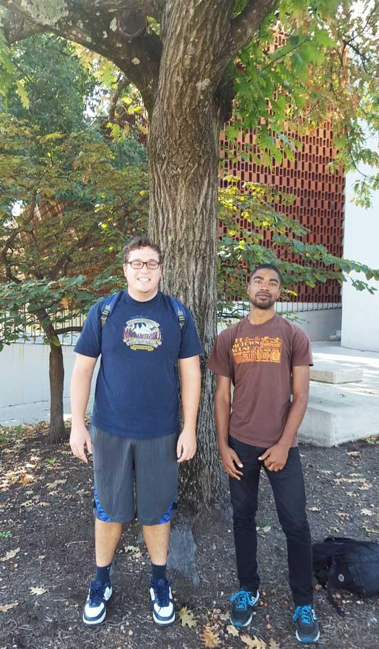 The favorite red oak of Mitchell and Hamani on University of Kentucky Campus in September 2016