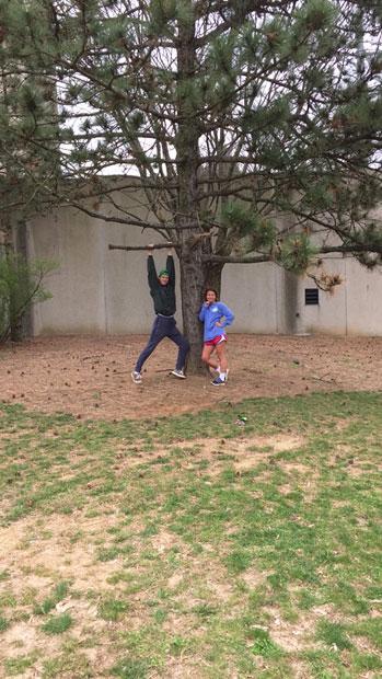 The favorite Austrian black pine of Natalie & Devin in March 2016