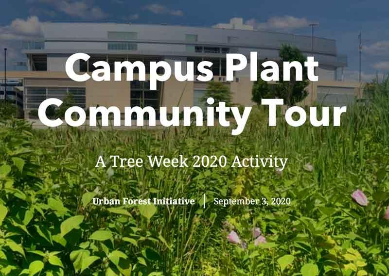 urban forest initiative tree week 2020 campus bike tour
