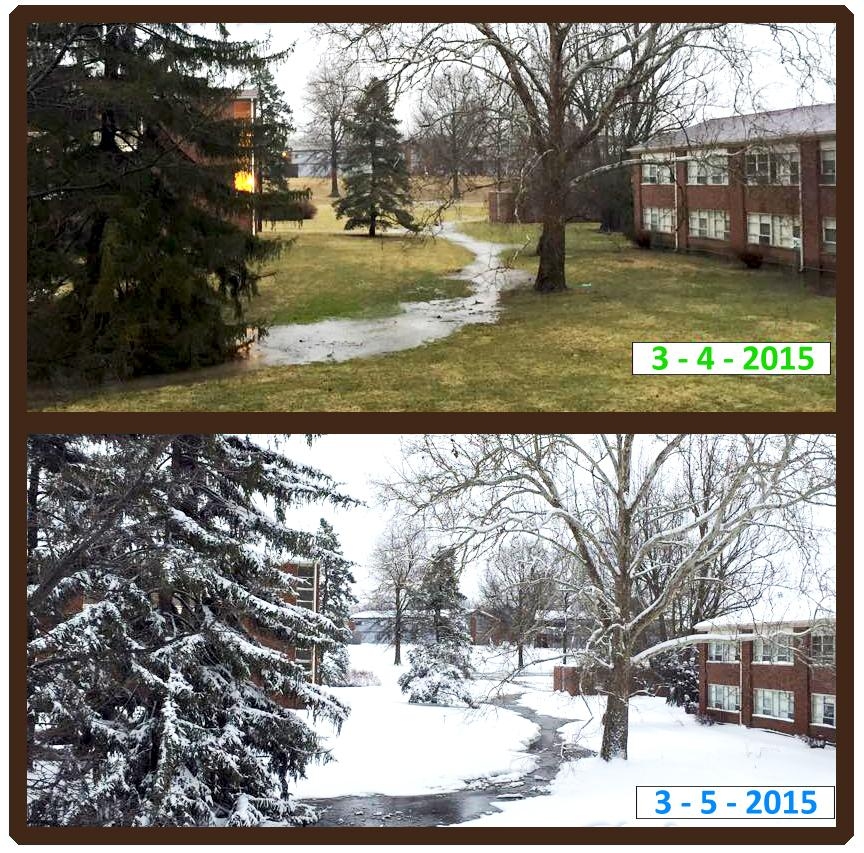 Sycamore day before and after snowstorm 2015