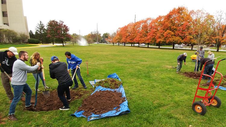 Urban Forest Initiative Tree Week Tree Planting LFUCG 2