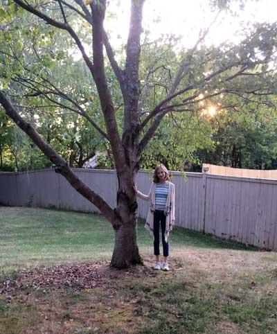 The favorite striped maple of Caroline in Summer 2015