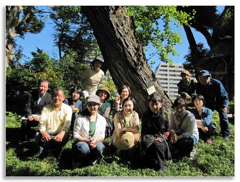 "City of Hiroshima tree experts and citizen volunteers near the gingko ""survivor"" tree that provided seeds for Lexington, KY"