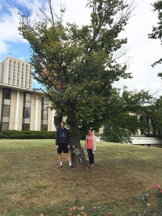 The favorite American hornbeam of Will and Hannah in October 2016