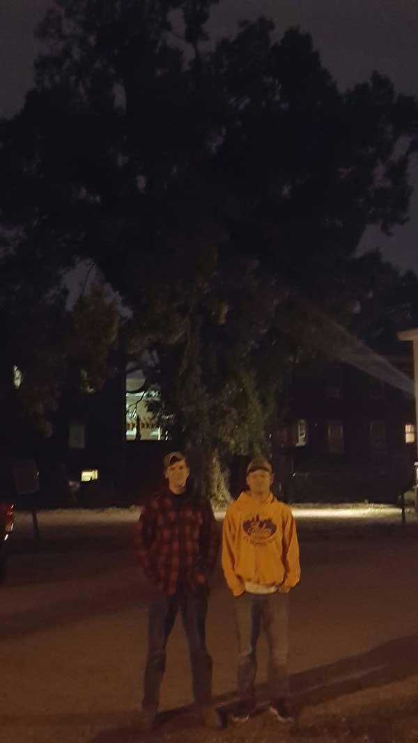 The favorite common hackberry of William and Ben on University of Kentucky Campus in September 2016