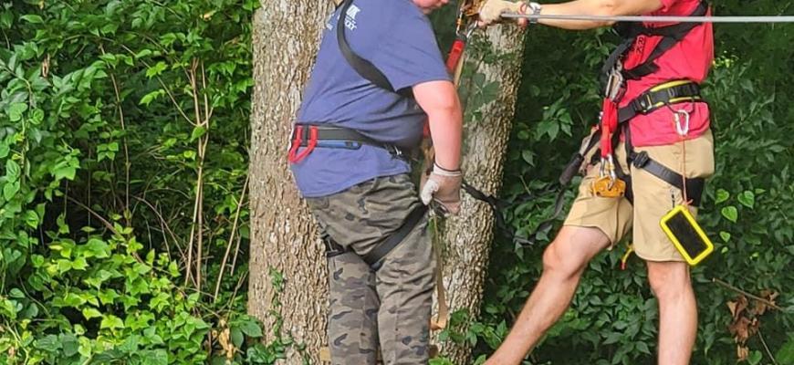 Urban Forest Initiative Tree Week 2021 Boone Creek