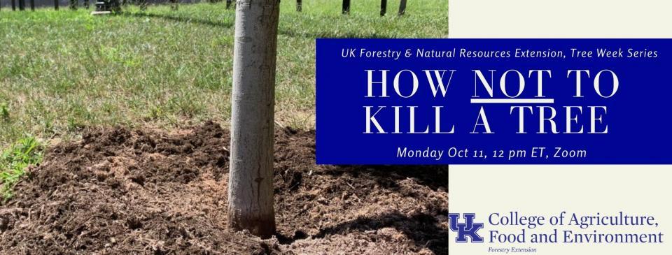 urban forest initiative tree week 2021 not kill a tree webinar