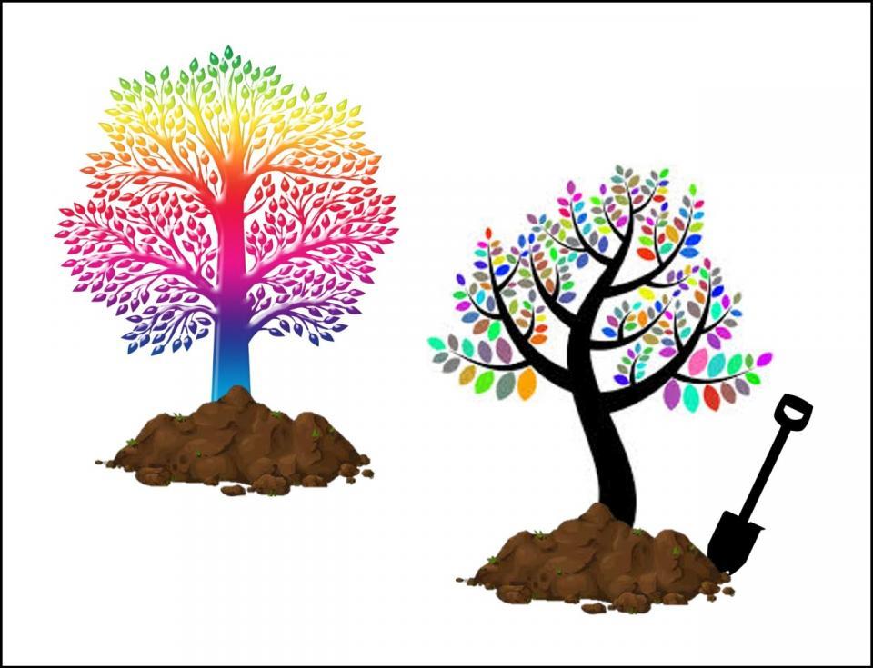 urban forest initiative tree week 2021 temple tree planting