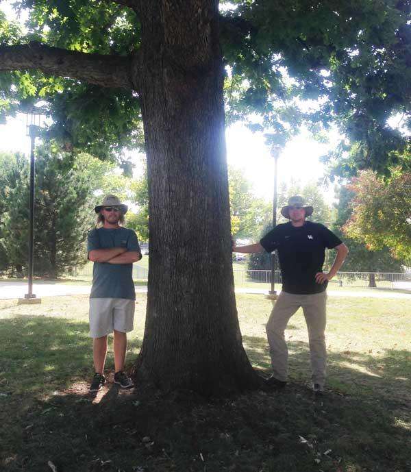 The favorite White Oak of Jake Borders and Mark Neathery in September 2015