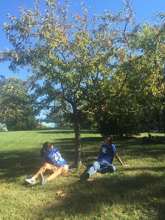 The favorite crabapple of Marisa and Justin in October 2016