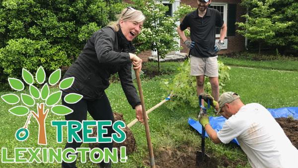 Urban Forest Initiative Tree Week Balled and Burlapped Tree Planting