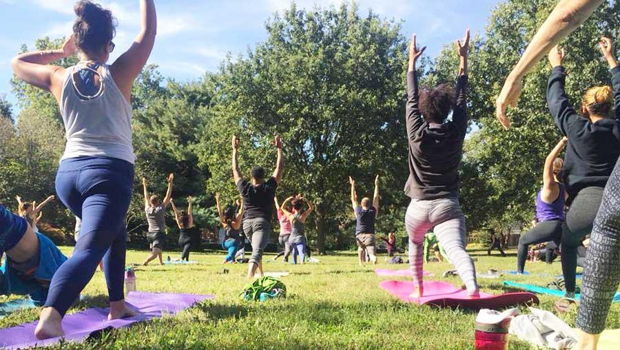 Urban Forest Initiative Tree Week Yoga Ashland